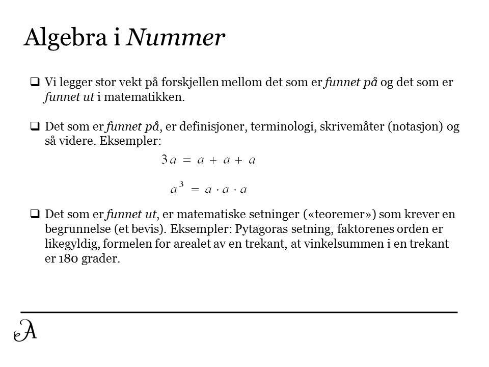 Algebra i Nummer (forts.)  I innlæringsfasen legger vi stor vekt på arbeid med regneuttrykk der det inngår mer enn èn regneoperasjon, men der det ikke inngår bokstaver.