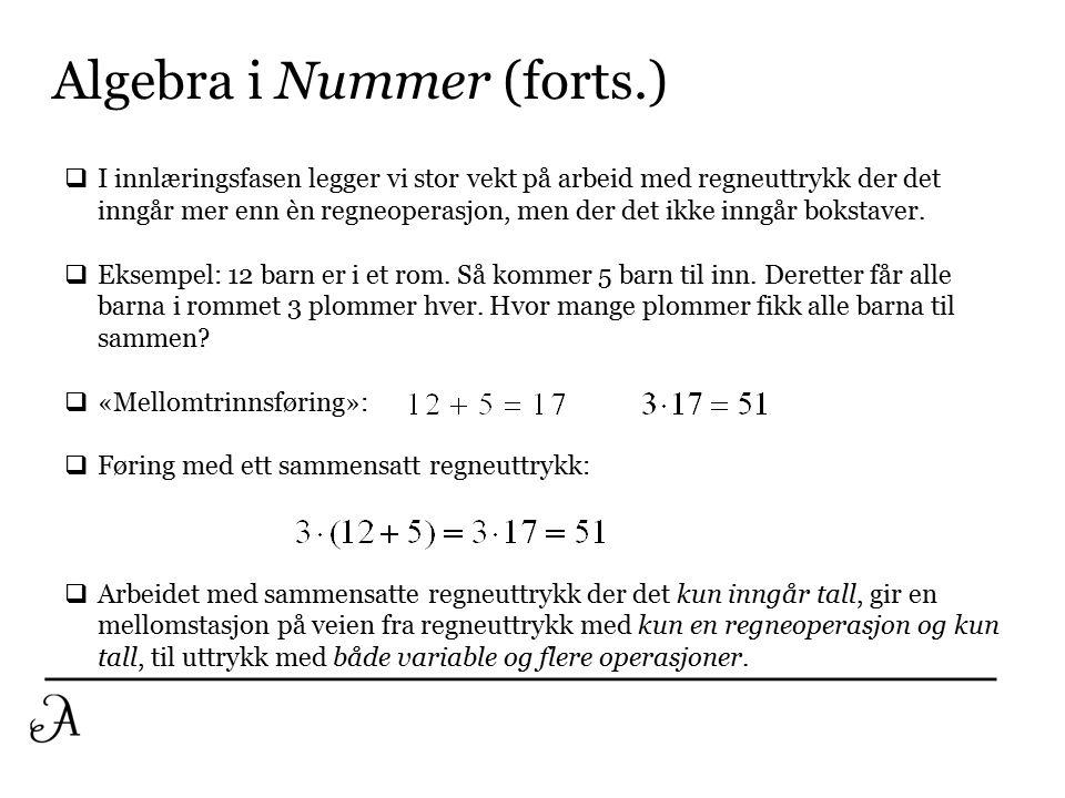 Algebra i Nummer (forts.)  Eksempel på regneuttrykk med to regneoperasjoner og variable: