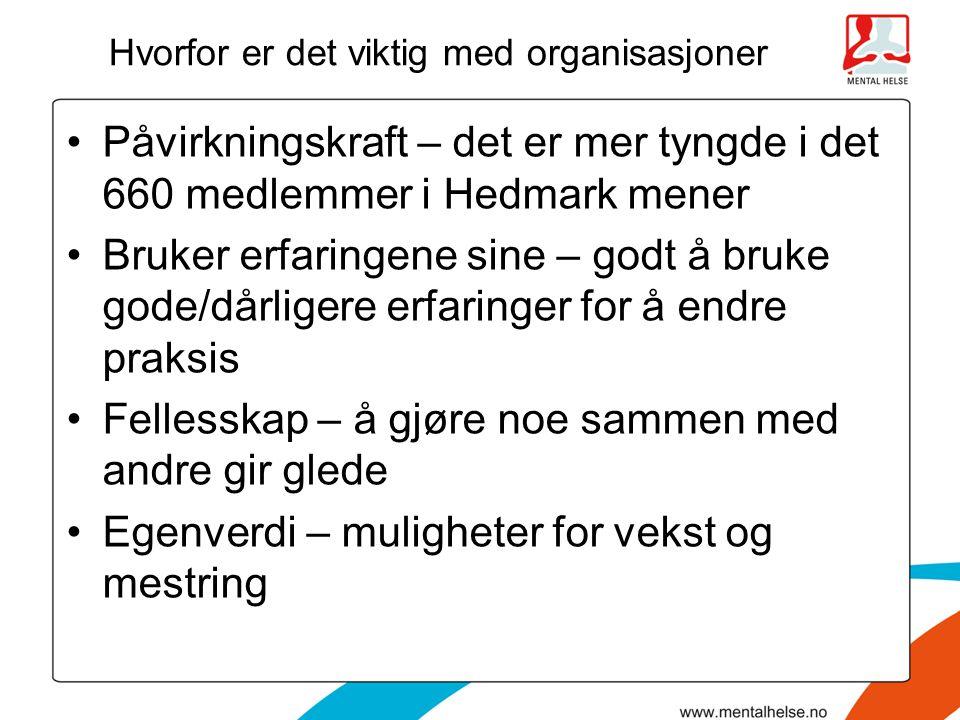Hvorfor er det viktig med organisasjoner Påvirkningskraft – det er mer tyngde i det 660 medlemmer i Hedmark mener Bruker erfaringene sine – godt å bru