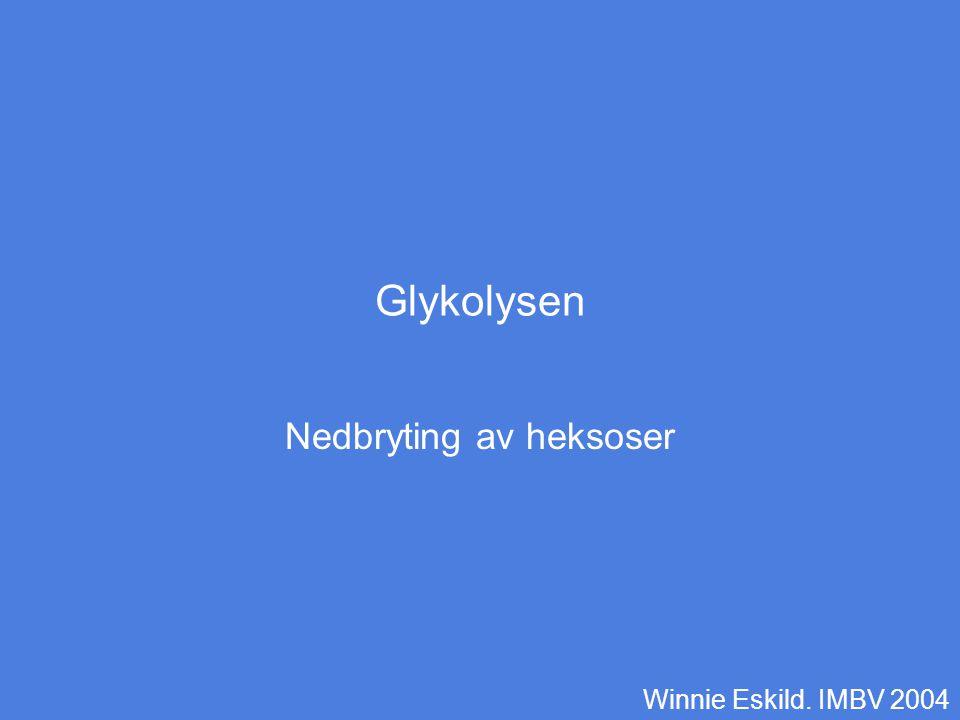 Glykolysen Nedbryting av heksoser Winnie Eskild. IMBV 2004