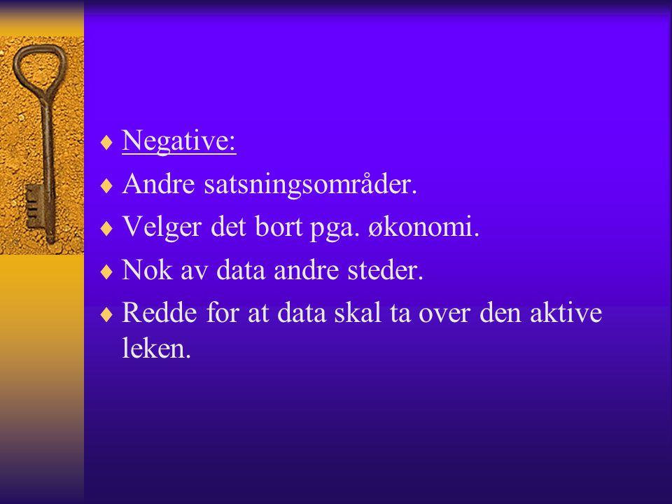  Negative:  Andre satsningsområder.  Velger det bort pga. økonomi.  Nok av data andre steder.  Redde for at data skal ta over den aktive leken.
