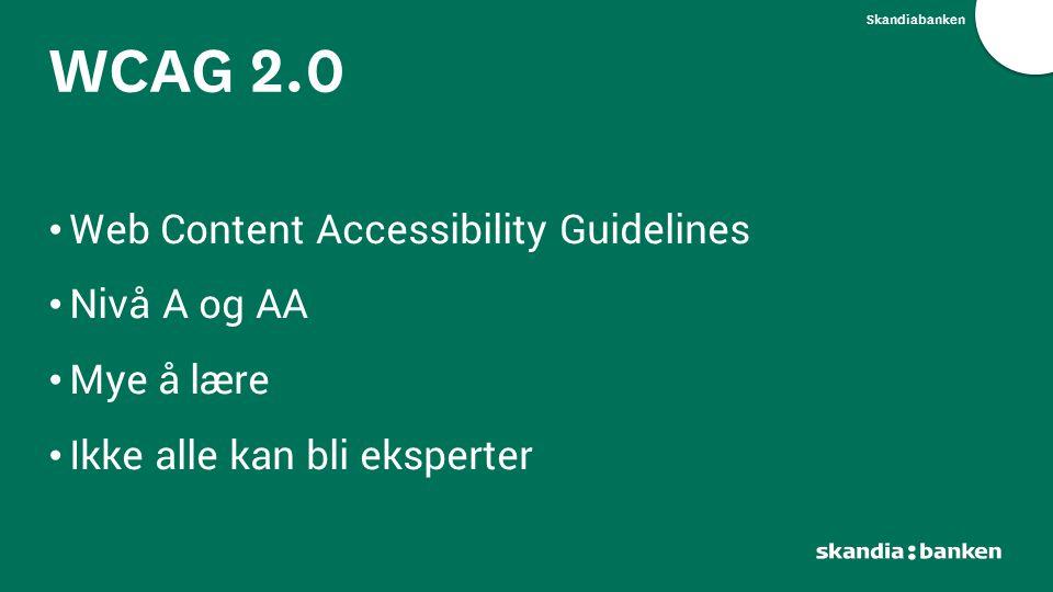 Skandiabanken Web Content Accessibility Guidelines Nivå A og AA Mye å lære Ikke alle kan bli eksperter WCAG 2.0
