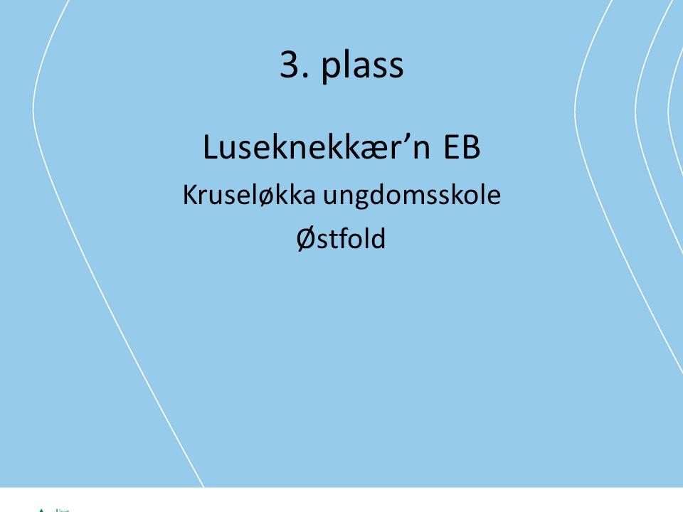 3. plass Luseknekkær'n EB Kruseløkka ungdomsskole Østfold