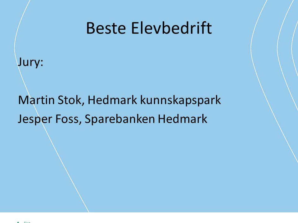 Beste Elevbedrift Jury: Martin Stok, Hedmark kunnskapspark Jesper Foss, Sparebanken Hedmark