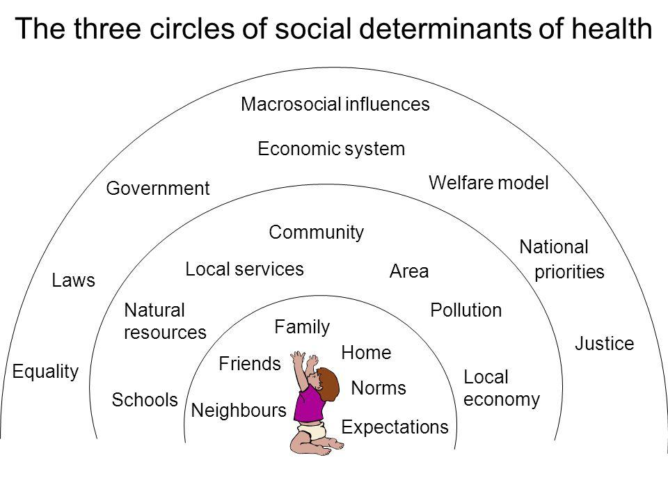 Three hypotheses (P.Magnus) The environmental model: Exposures, i.e.