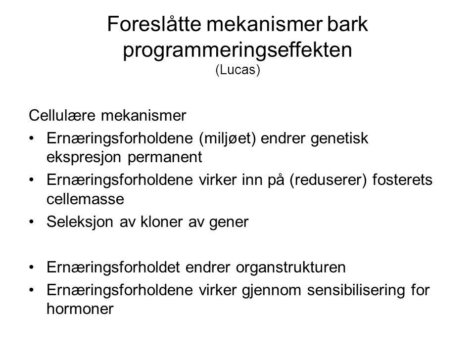 Foreslåtte mekanismer bark programmeringseffekten (Lucas) Cellulære mekanismer Ernæringsforholdene (miljøet) endrer genetisk ekspresjon permanent Ernæ