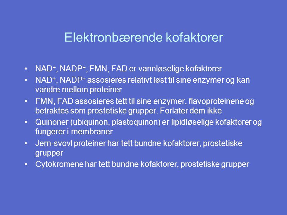 Elektronbærende kofaktorer NAD +, NADP +, FMN, FAD er vannløselige kofaktorer NAD +, NADP + assosieres relativt løst til sine enzymer og kan vandre mellom proteiner FMN, FAD assosieres tett til sine enzymer, flavoproteinene og betraktes som prostetiske grupper.