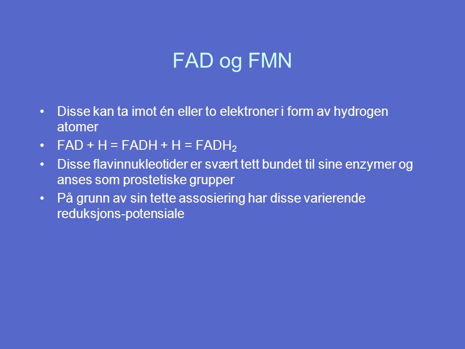 Disse kan ta imot én eller to elektroner i form av hydrogen atomer FAD + H = FADH + H = FADH 2 Disse flavinnukleotider er svært tett bundet til sine enzymer og anses som prostetiske grupper På grunn av sin tette assosiering har disse varierende reduksjons-potensiale