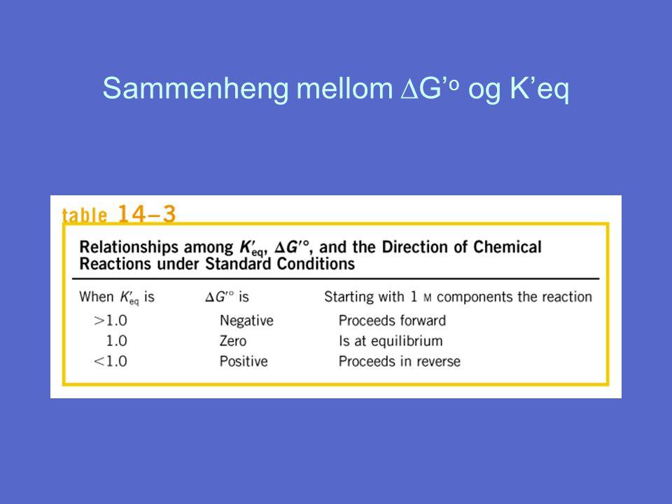 Sammenheng mellom  G' o og K'eq