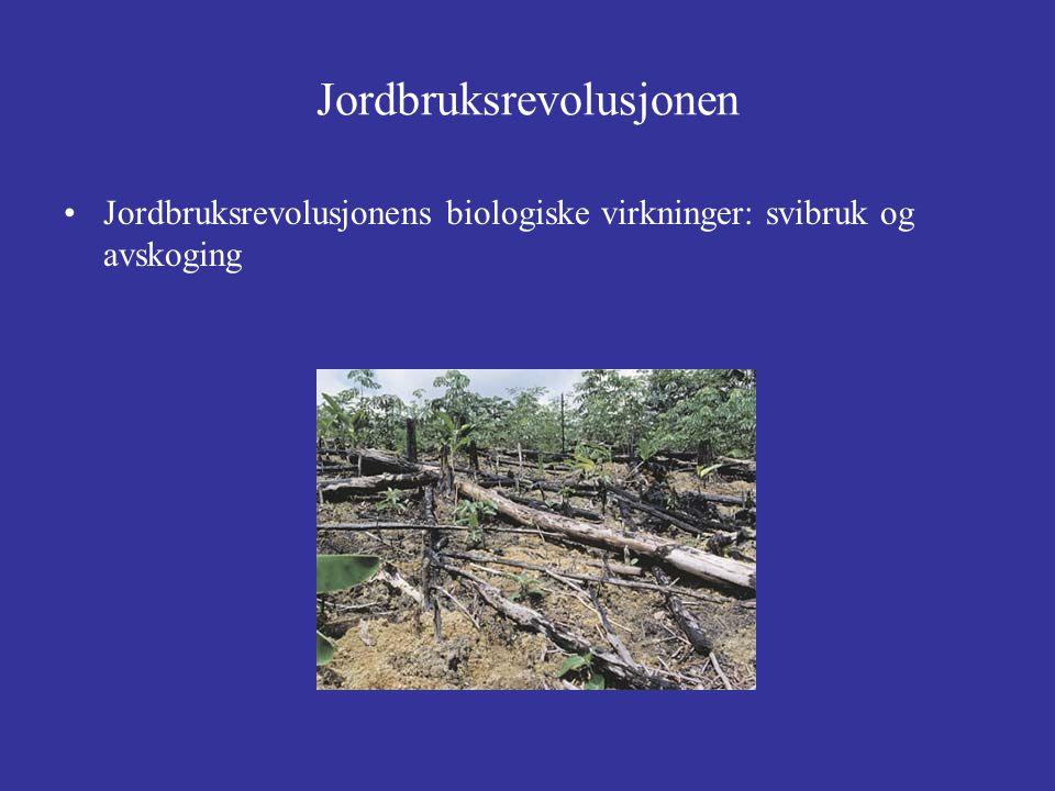 Jordbruksrevolusjonen Jordbruksrevolusjonens biologiske virkninger: svibruk og avskoging