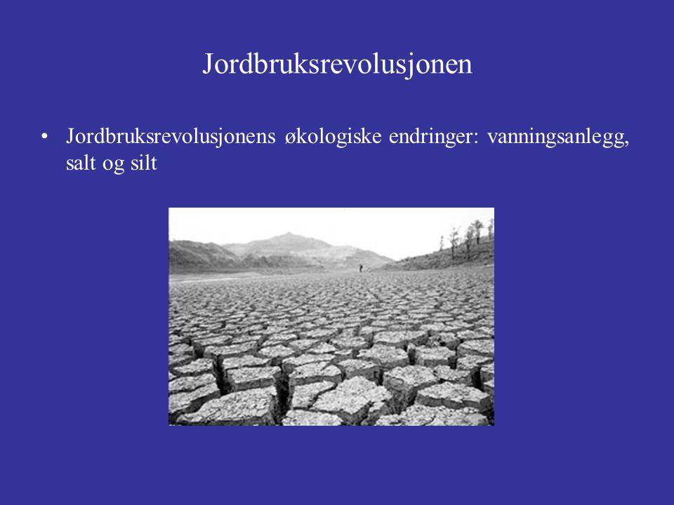 Jordbruksrevolusjonen Jordbruksrevolusjonens økologiske endringer: vanningsanlegg, salt og silt