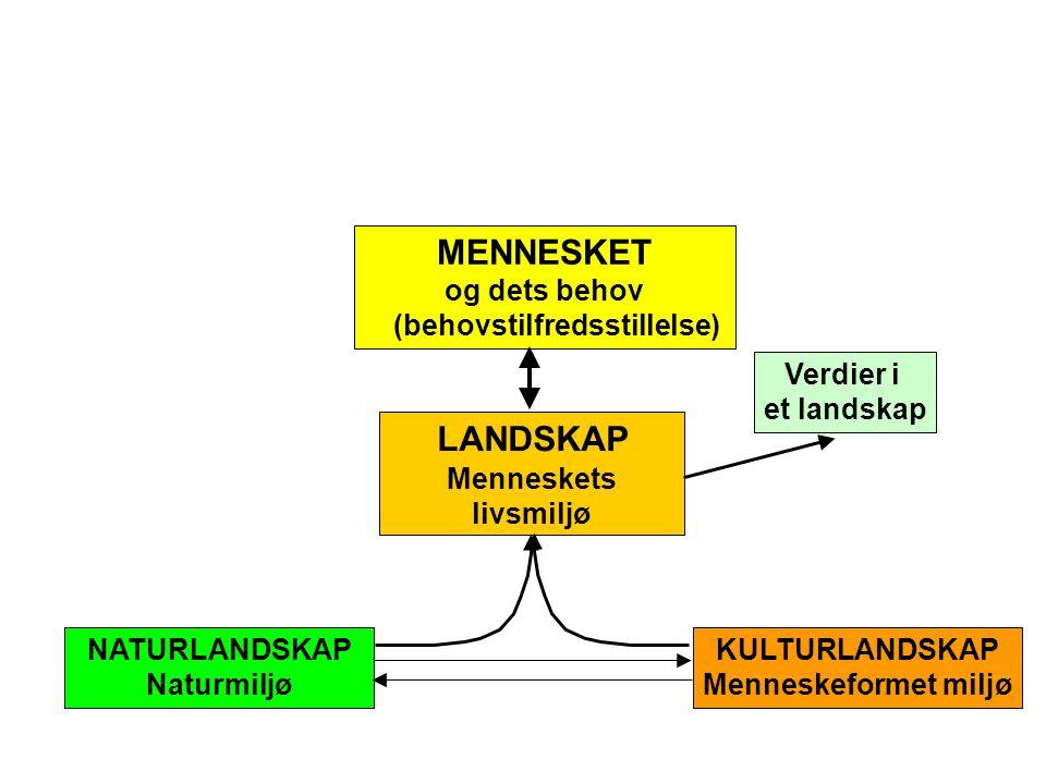 LANDSKAP Menneskets livsmiljø Verdier i et landskap MENNESKET og dets behov (behovstilfredsstillelse) NATURLANDSKAP Naturmiljø KULTURLANDSKAP Menneskeformet miljø