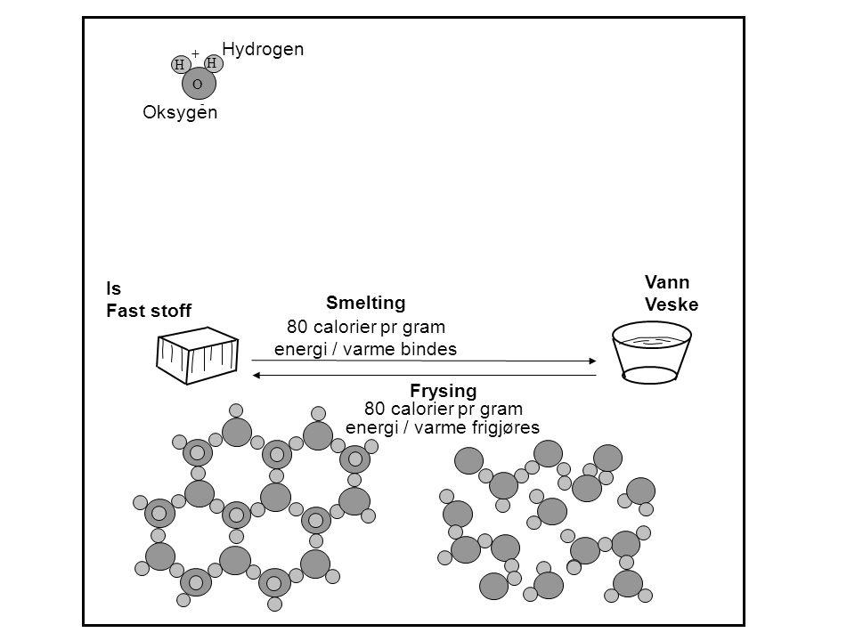 Hydrogen Oksygen Smelting 80 calorier pr gram energi / varme bindes Frysing 80 calorier pr gram energi / varme frigjøres Is Fast stoff Vann Veske