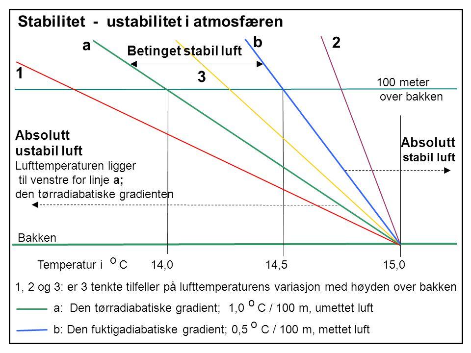 a b Stabilitet - ustabilitet i atmosfæren 100 meter over bakken Bakken a: Den tørradiabatiske gradient; 1,0 C / 100 m, umettet luft b: Den fuktigadiab