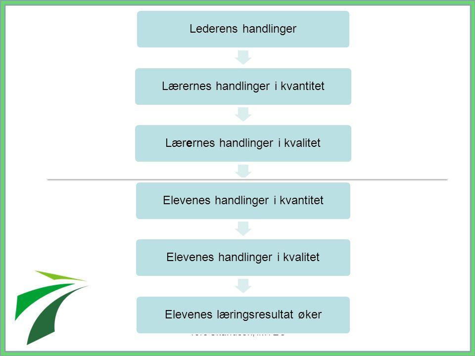 Tore Skandsen, IMTEC Lederens handlingerLærernes handlinger i kvantitetLærernes handlinger i kvalitetElevenes handlinger i kvantitetElevenes handlinge