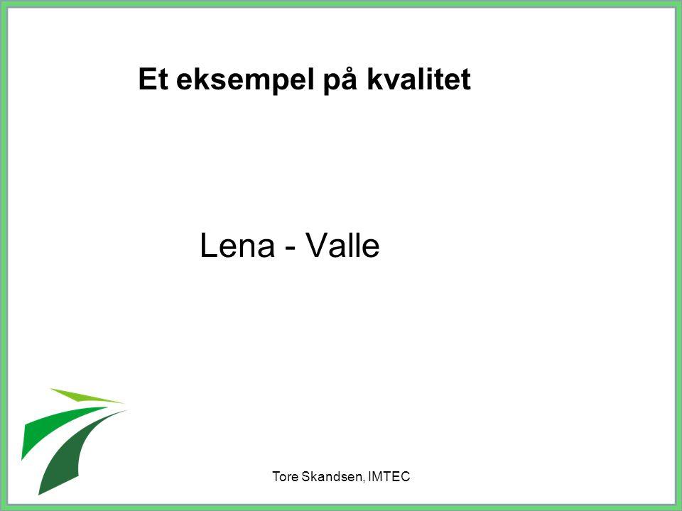 Tore Skandsen, IMTEC Lena - Valle Et eksempel på kvalitet