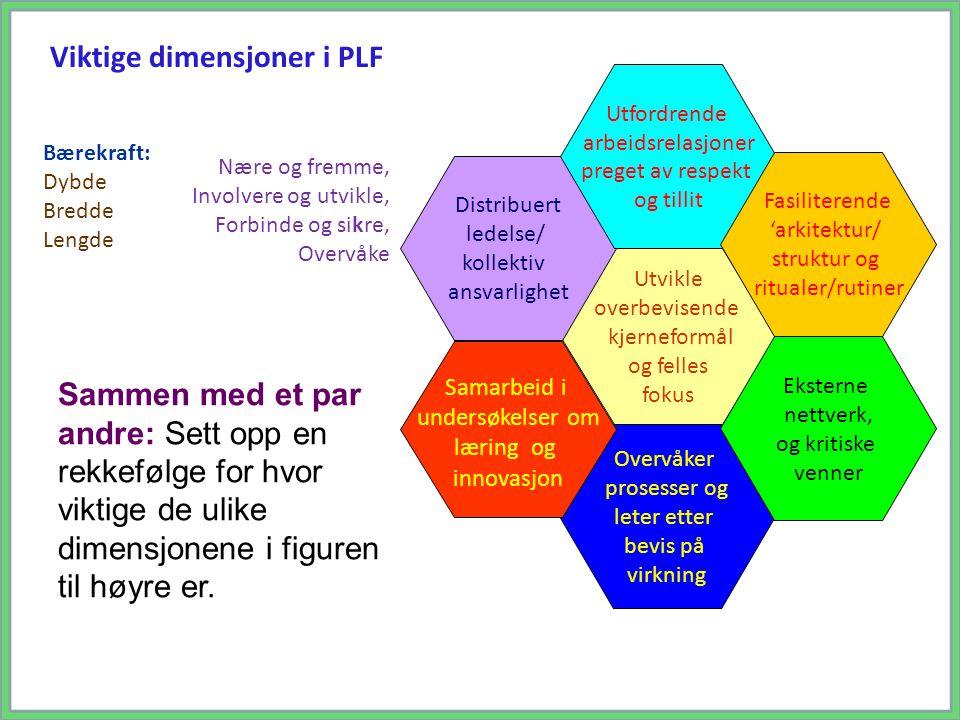 Sammen med et par andre: Sett opp en rekkefølge for hvor viktige de ulike dimensjonene i figuren til høyre er. Viktige dimensjoner i PLF Bærekraft: Dy