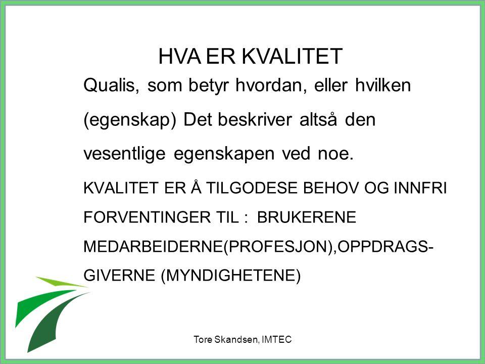 Tore Skandsen, IMTEC
