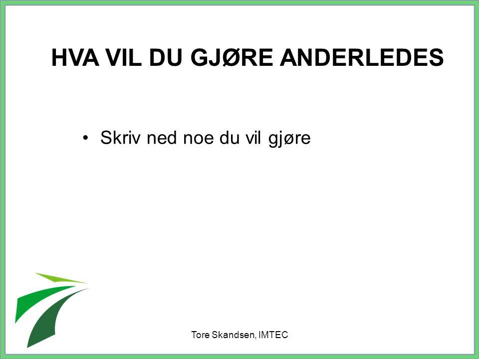 Tore Skandsen, IMTEC Skriv ned noe du vil gjøre HVA VIL DU GJØRE ANDERLEDES