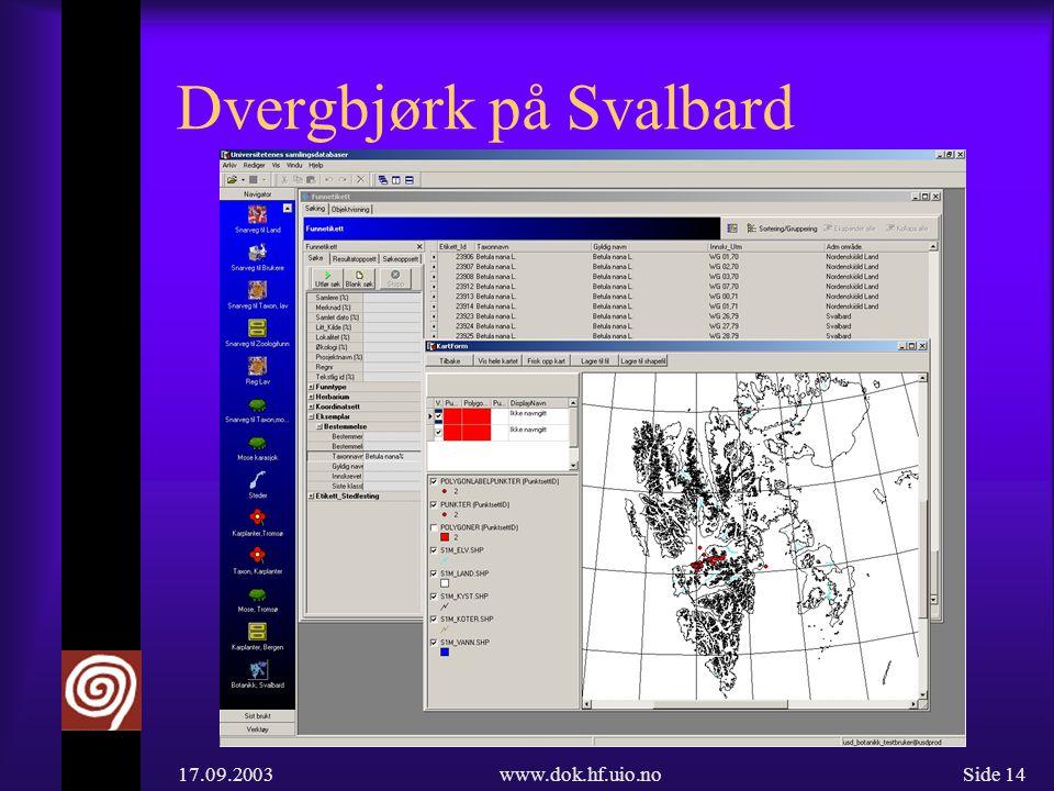 17.09.2003www.dok.hf.uio.noSide 14 Dvergbjørk på Svalbard