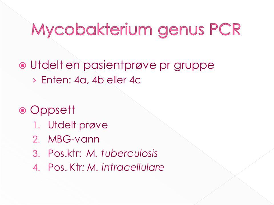  Utdelt en pasientprøve pr gruppe › Enten: 4a, 4b eller 4c  Oppsett 1.