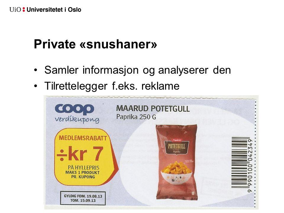 Private «snushaner» Samler informasjon og analyserer den Tilrettelegger f.eks. reklame
