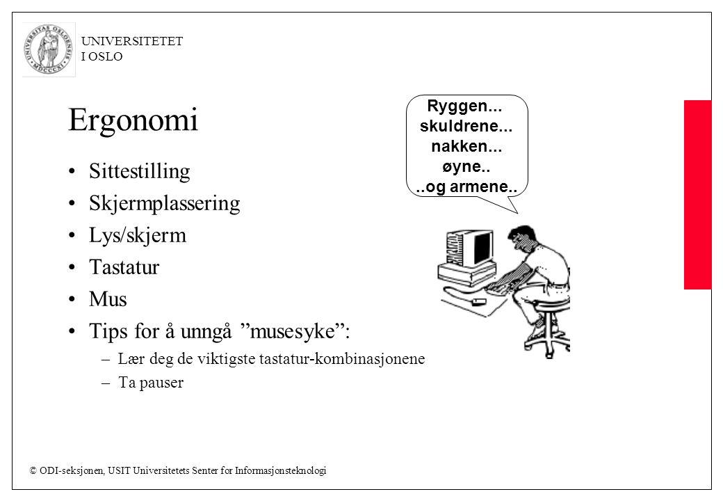 © ODI-seksjonen, USIT Universitetets Senter for Informasjonsteknologi UNIVERSITETET I OSLO Ergonomi Sittestilling Skjermplassering Lys/skjerm Tastatur