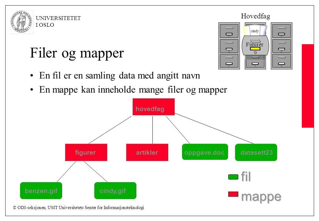 © ODI-seksjonen, USIT Universitetets Senter for Informasjonsteknologi UNIVERSITETET I OSLO Filer og mapper En fil er en samling data med angitt navn En mappe kan inneholde mange filer og mapper hovedfag artikleroppgave.docdatasett23figurer benzen.gifcindy.gif fil mappe Figurer cindy Hovedfag