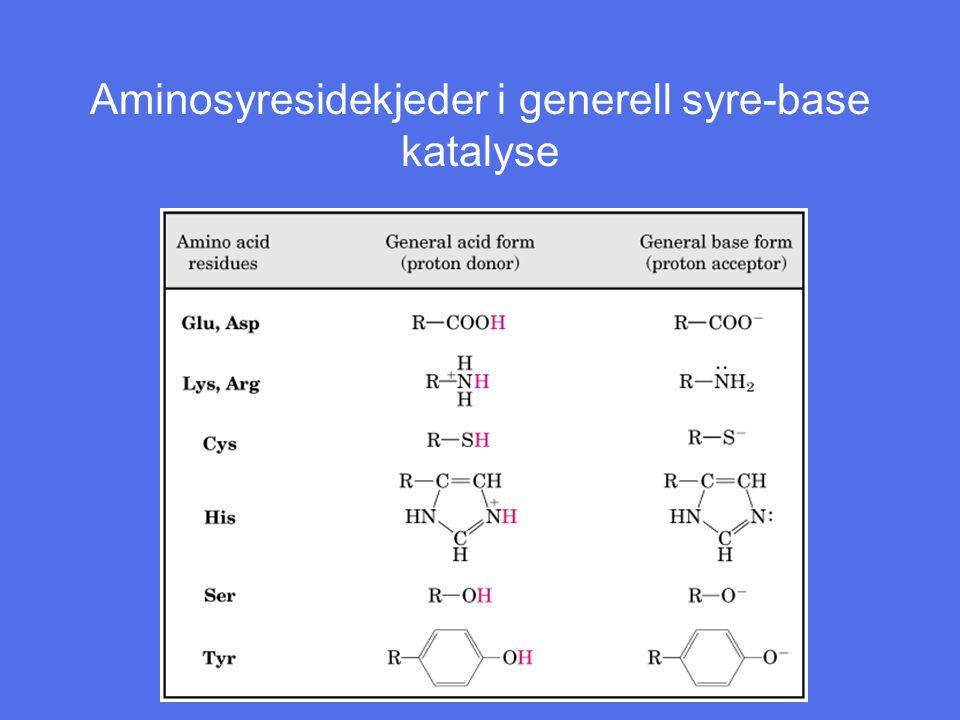 Aminosyresidekjeder i generell syre-base katalyse