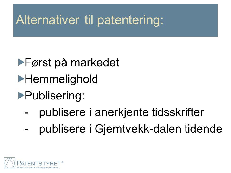Alternativer til patentering:  Først på markedet  Hemmelighold  Publisering: -publisere i anerkjente tidsskrifter -publisere i Gjemtvekk-dalen tide