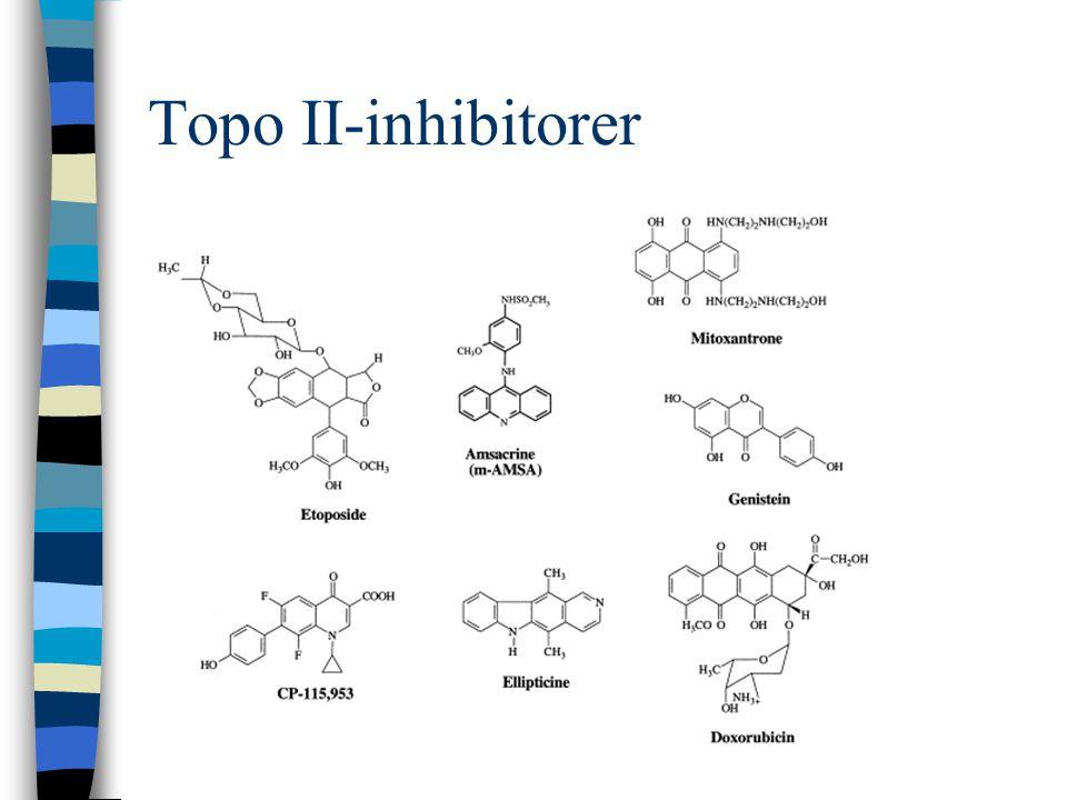 Topo II-inhibitorer
