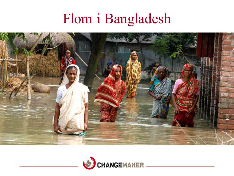 Flom i Bangladesh