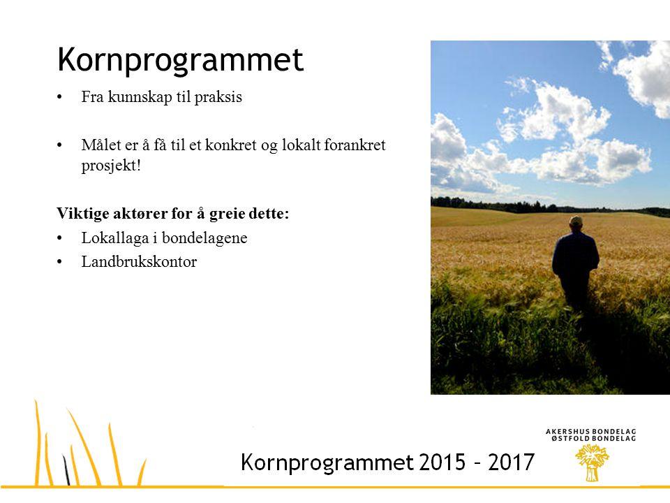 Kornprogrammet Fra kunnskap til praksis Målet er å få til et konkret og lokalt forankret prosjekt.