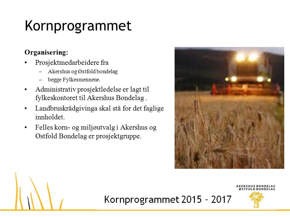Kornprogrammet Organisering: Prosjektmedarbeidere fra –Akershus og Østfold bondelag –begge Fylkesmennene.
