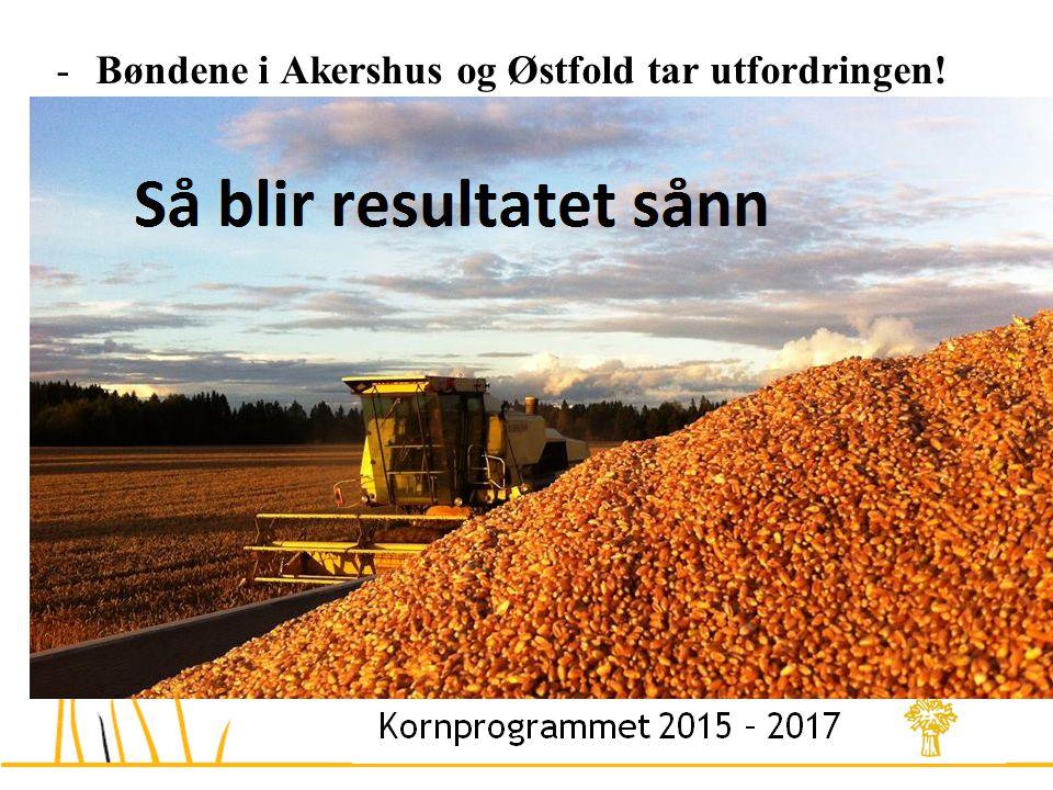 -Bøndene i Akershus og Østfold tar utfordringen.