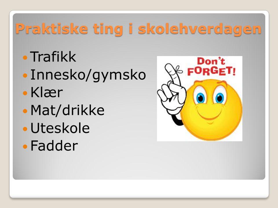 Praktiske ting i skolehverdagen Trafikk Innesko/gymsko Klær Mat/drikke Uteskole Fadder