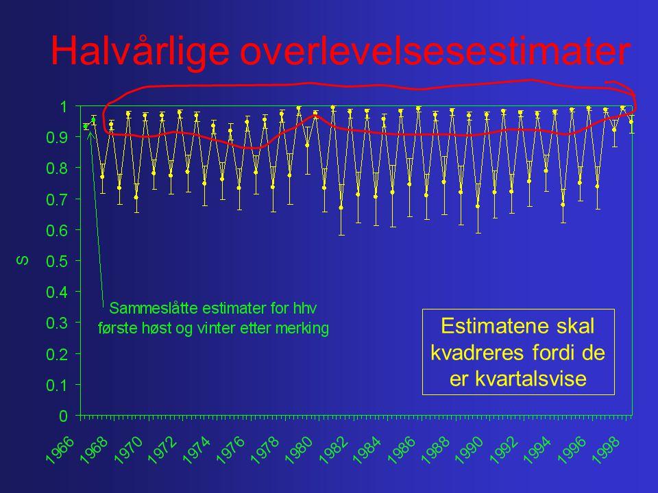 Halvårlige overlevelsesestimater Estimatene skal kvadreres fordi de er kvartalsvise