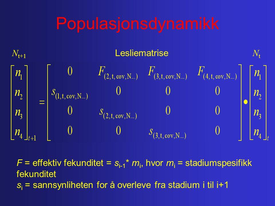 Populasjonsdynamikk F = effektiv fekunditet = s i-1 * m i, hvor m i = stadiumspesifikk fekunditet s i = sannsynliheten for å overleve fra stadium i til i+1 Lesliematrise N t+1 NtNt