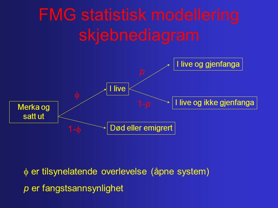 FMG statistisk modellering skjebnediagram Merka og satt ut Død eller emigrert I live 1-p p 1-   I live og gjenfanga I live og ikke gjenfanga  er tilsynelatende overlevelse (åpne system) p er fangstsannsynlighet