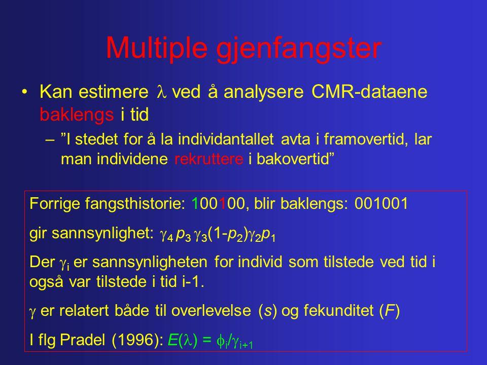 Multiple gjenfangster Kan estimere ved å analysere CMR-dataene baklengs i tid – I stedet for å la individantallet avta i framovertid, lar man individene rekruttere i bakovertid Forrige fangsthistorie: 100100, blir baklengs: 001001 gir sannsynlighet:  4 p 3  3 (1-p 2 )  2 p 1 Der  i er sannsynligheten for individ som tilstede ved tid i også var tilstede i tid i-1.