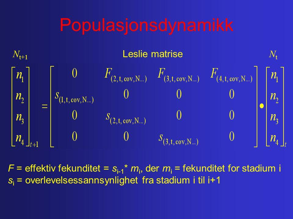 Populasjonsdynamikk Leslie matrise N t+1 NtNt F = effektiv fekunditet = s i-1 * m i, der m i = fekunditet for stadium i s i = overlevelsessannsynlighet fra stadium i til i+1
