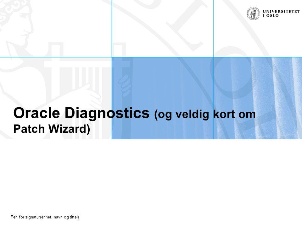 Felt for signatur(enhet, navn og tittel) Oracle Diagnostics (og veldig kort om Patch Wizard)