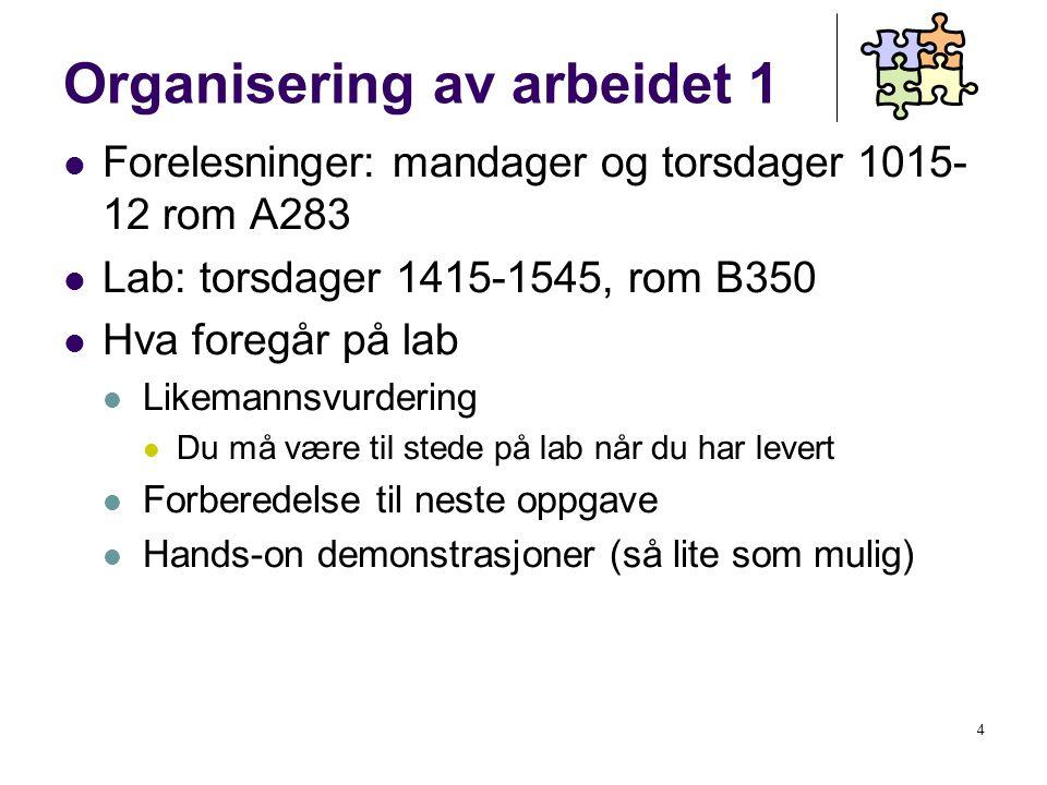 25 Integrasjonsproblemets dimensjoner Hasselbring (2000)