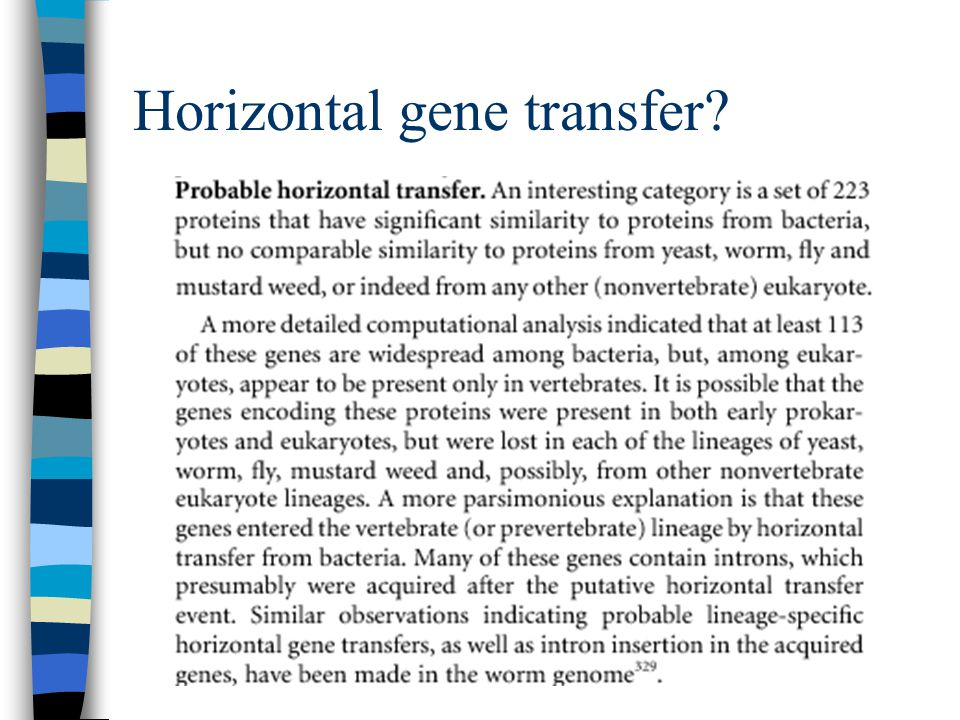 Horizontal gene transfer?