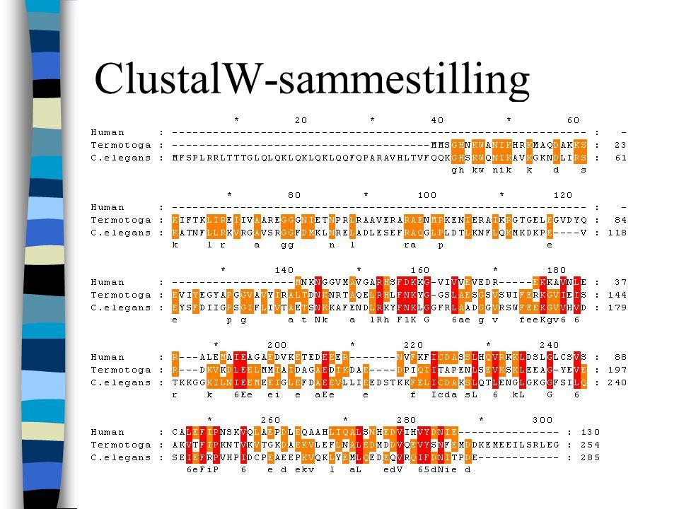 ClustalW-sammestilling