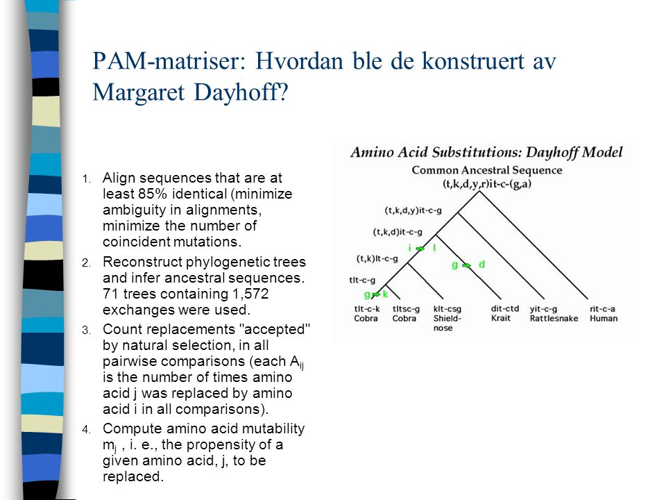 PAM-matriser: Hvordan ble de konstruert av Margaret Dayhoff? 1. Align sequences that are at least 85% identical (minimize ambiguity in alignments, min