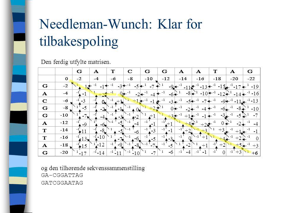 Needleman-Wunch: Klar for tilbakespoling Den ferdig utfylte matrisen.