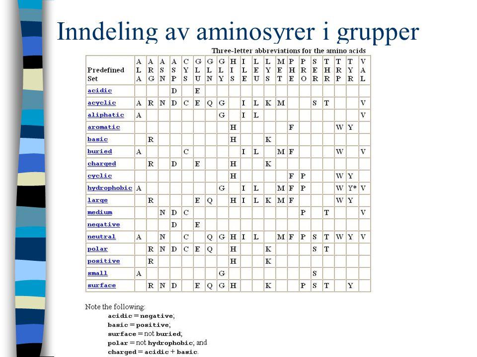 Inndeling av aminosyrer i grupper