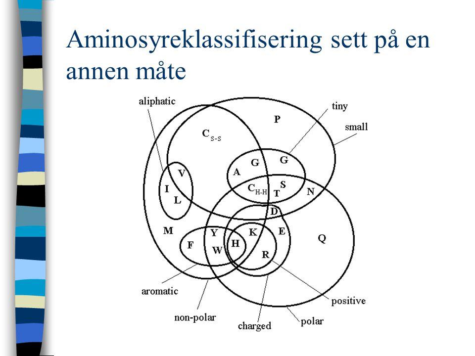 Aminosyreklassifisering sett på en annen måte