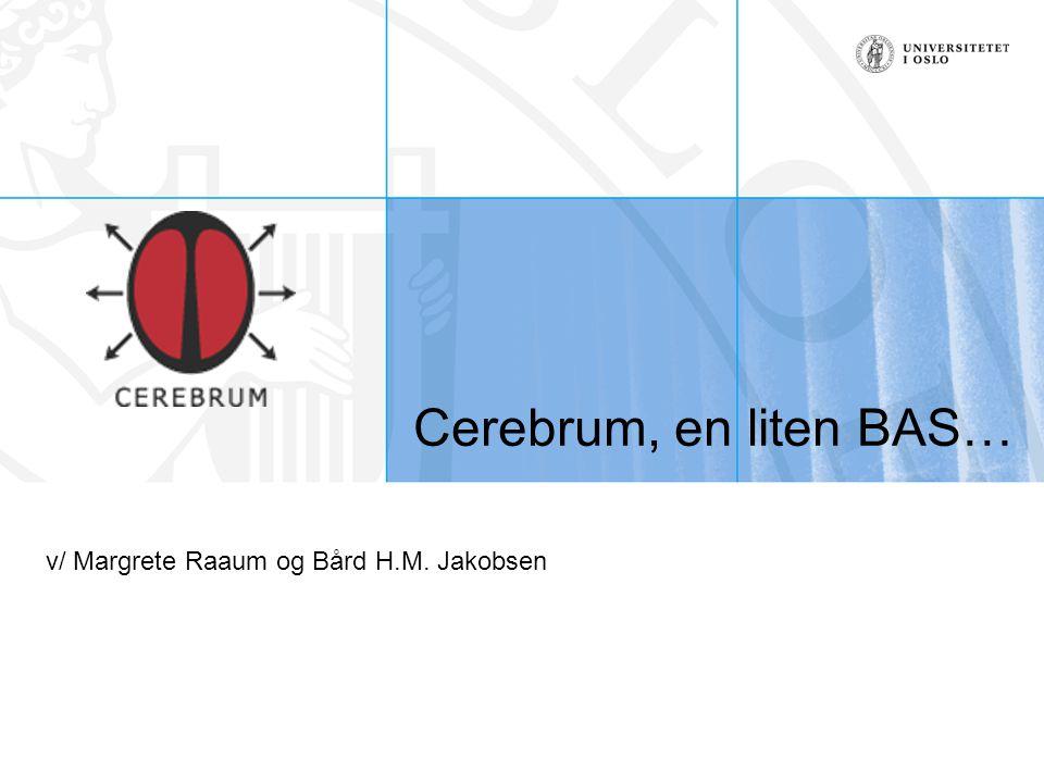 Cerebrum, en liten BAS… v/ Margrete Raaum og Bård H.M. Jakobsen